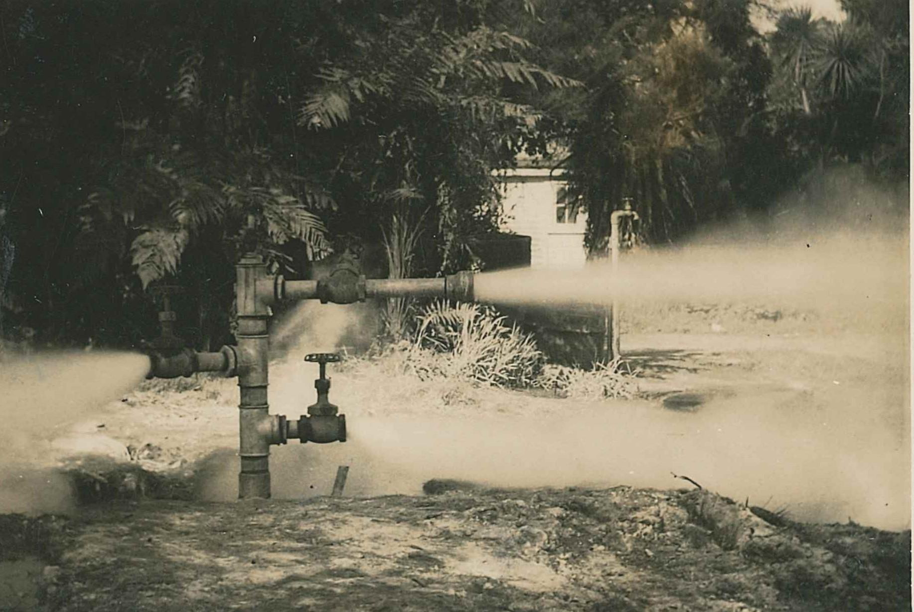 Doug Chase steam